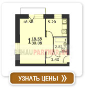 1-комнатная квартира (тип 1)