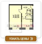 1-комнатная квартира (тип 2)