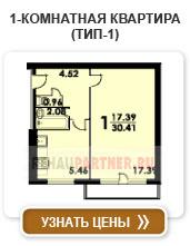 1-комнатная квартира (тип-1)