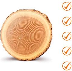 Преимущества древесины дуба для окон